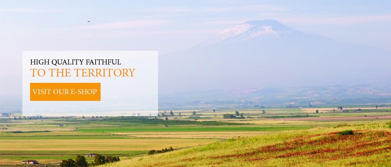 Sicily Corner seleziona prodotti d'eccellenza artigianali, realizzati con le migliori materie prime provenienti da colture tipiche. Solo i sapori più autentici e le produzioni più fedeli alle tradizioni.